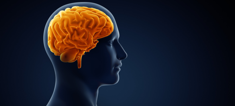Schizophrenia Study May Lead to New Innovative Solutions